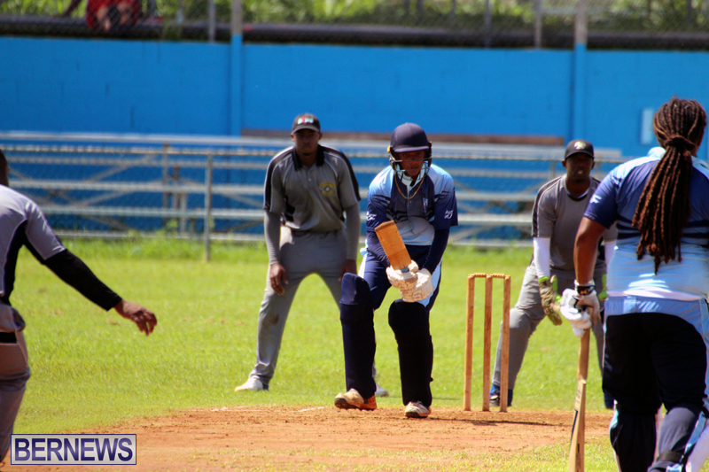 cricket-Bermuda-September-2017-2