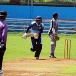 cricket Bermuda September 2017 (3)