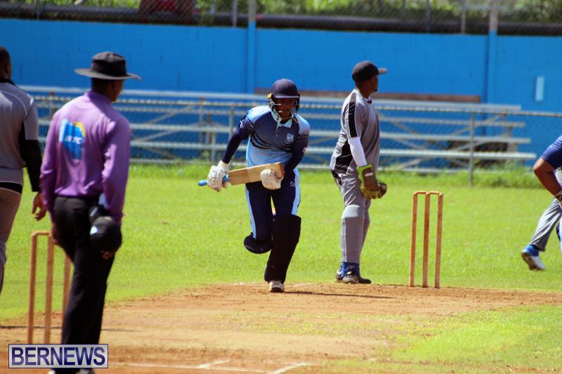 cricket-Bermuda-September-2017-3
