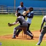cricket Bermuda September 2017 (4)