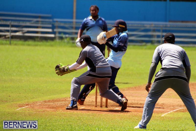 cricket-Bermuda-September-2017-4
