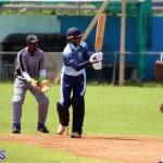 cricket Bermuda September 2017 (5)