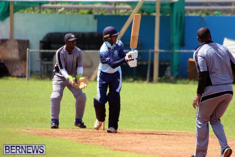cricket-Bermuda-September-2017-5