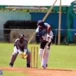 cricket Bermuda September 2017 (6)