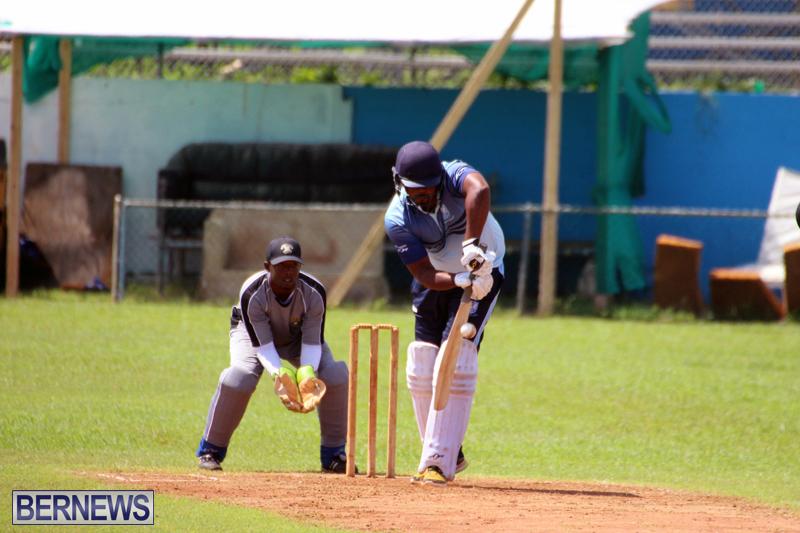 cricket-Bermuda-September-2017-6