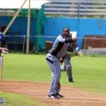 cricket Bermuda September 2017 (8)