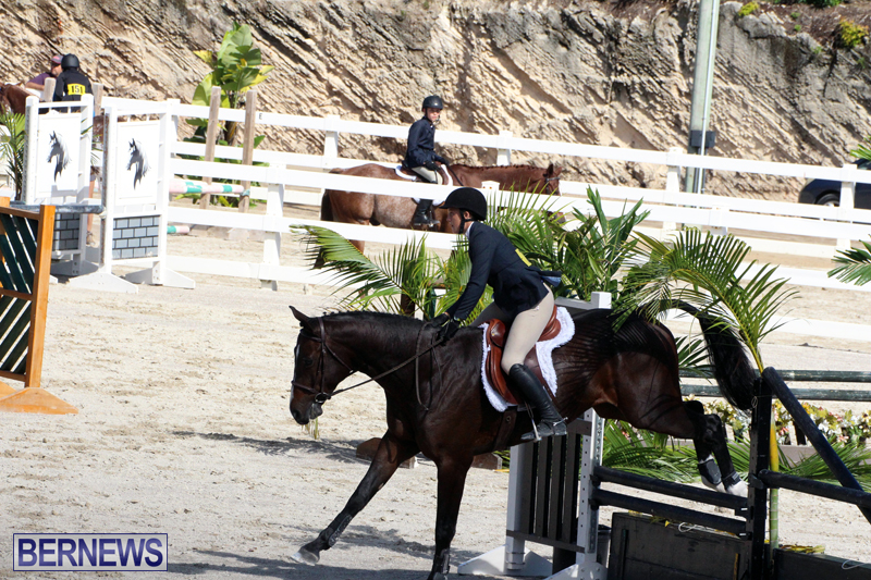 BHPA-Fall-Show-2017-Bermuda-Oct-25-2017-10