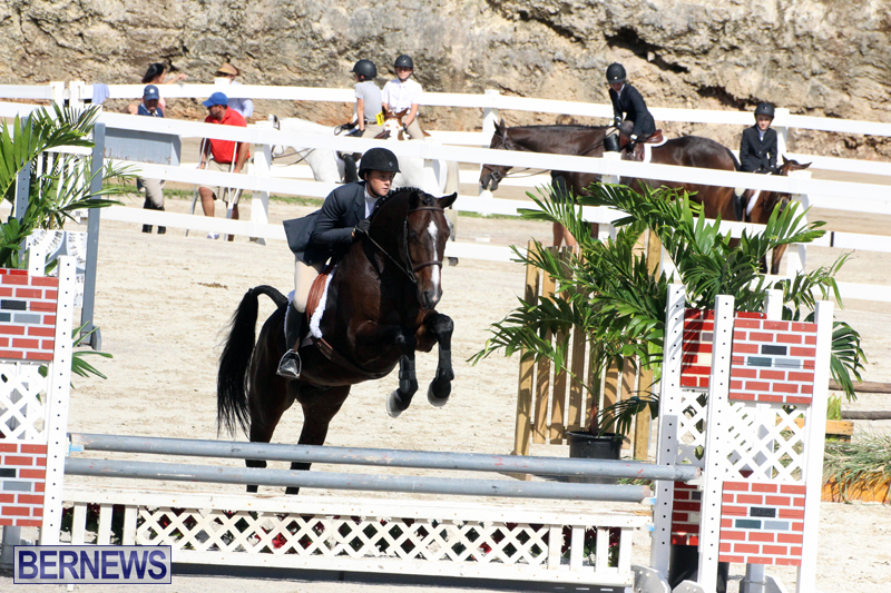 BHPA-Fall-Show-2017-Bermuda-Oct-25-2017-11