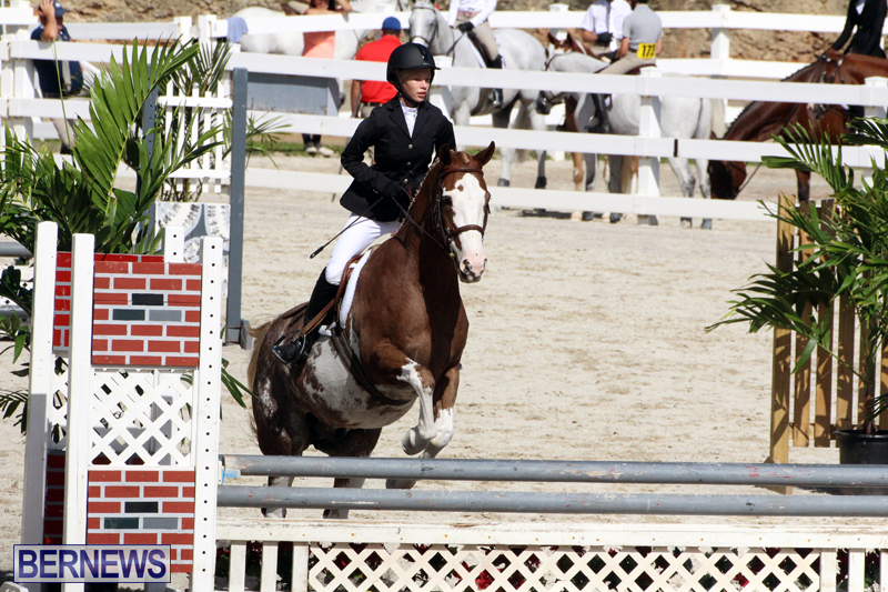 BHPA-Fall-Show-2017-Bermuda-Oct-25-2017-15