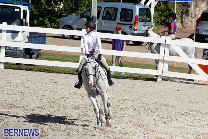 BHPA-Fall-Show-2017-Bermuda-Oct-25-2017-17