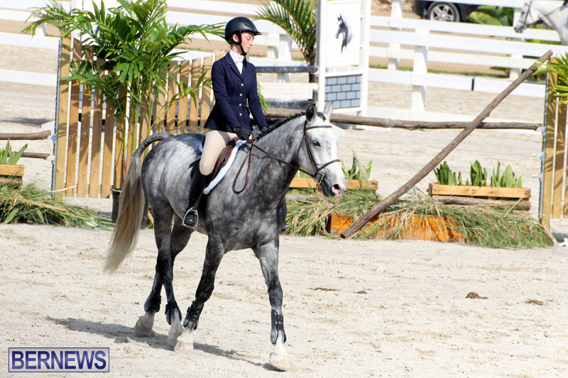BHPA-Fall-Show-2017-Bermuda-Oct-25-2017-3