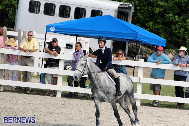 BHPA-Fall-Show-2017-Bermuda-Oct-25-2017-5