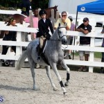 BHPA Fall Show 2017 Bermuda Oct 25 2017 (8)