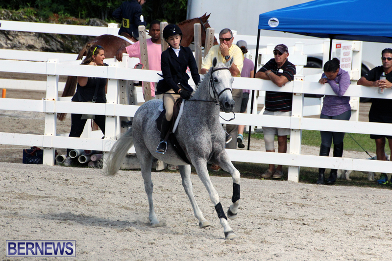 BHPA-Fall-Show-2017-Bermuda-Oct-25-2017-8