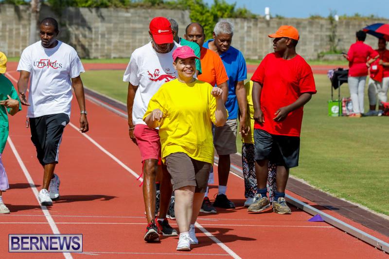 Bermuda-Special-Olympics-October-14-2017_6264