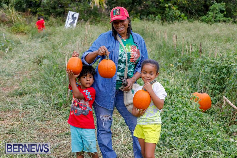 JJ-Produce-Pumpkin-Picking-Bermuda-October-14-2017_6141