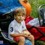 J&J Produce Pumpkin Picking Bermuda, October 14 2017_6174