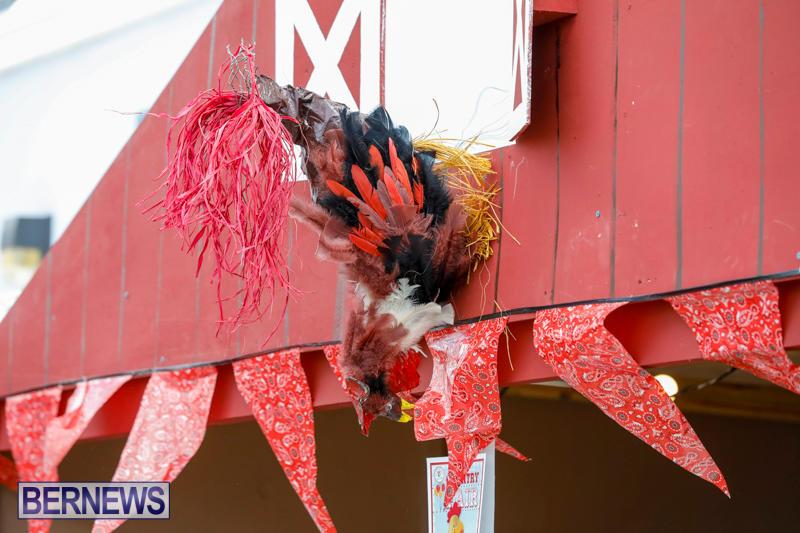 Mount-Saint-Agnes-Bazaar-Country-Fair-Bermuda-October-14-2017_6329