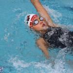 BASA Winter Swim Meet Bermuda Nov 15 2017 (17)