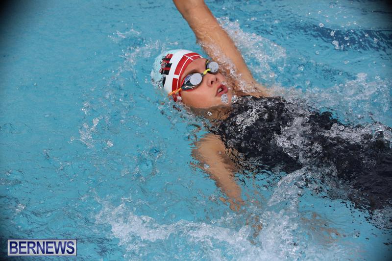 BASA-Winter-Swim-Meet-Bermuda-Nov-15-2017-17