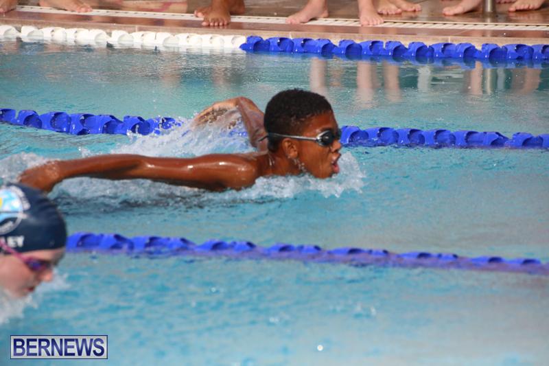 BASA-Winter-Swim-Meet-Bermuda-Nov-15-2017-18