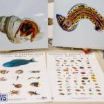 BUEI Harbourside Crafts and Art Market Bermuda, November 18 2017_0166