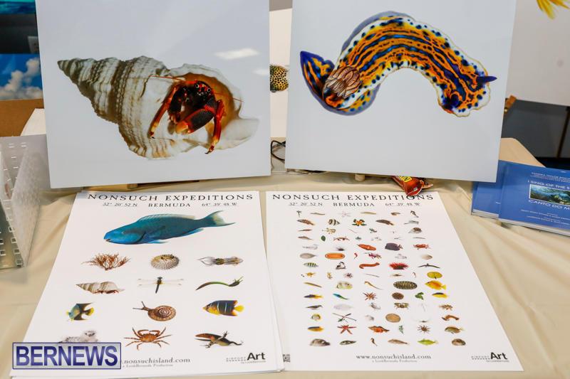 BUEI-Harbourside-Crafts-and-Art-Market-Bermuda-November-18-2017_0166