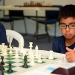 Bermuda Chess Association Nov 8 2017 (12)