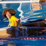Cardboard Boat Challenge Bermuda, November 16 2017_8888