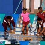 Cardboard Boat Challenge Bermuda, November 16 2017_8942