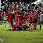 Classic Lions vs Rugby Canada World Rugby Classic Bermuda, November 8 2017_4675