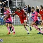 Classic Lions vs Rugby Canada World Rugby Classic Bermuda, November 8 2017_4851