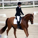 Dressage Bermuda Nov 8 2017 (10)