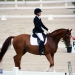 Dressage Bermuda Nov 8 2017 (12)