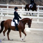 Dressage Bermuda Nov 8 2017 (13)
