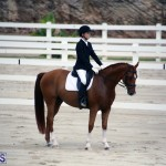 Dressage Bermuda Nov 8 2017 (14)