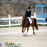 Dressage Bermuda Nov 8 2017 (15)