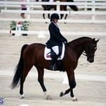Dressage Bermuda Nov 8 2017 (17)