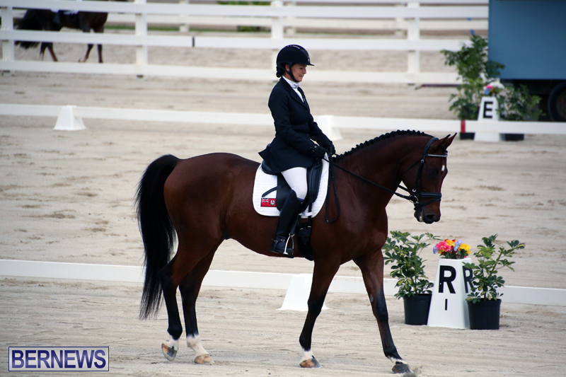 Dressage-Bermuda-Nov-8-2017-18