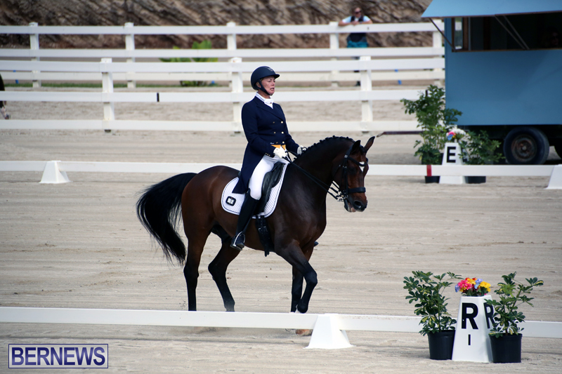 Dressage-Bermuda-Nov-8-2017-3