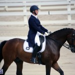 Dressage Bermuda Nov 8 2017 (4)