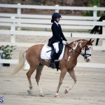 Dressage Bermuda Nov 8 2017 (5)