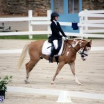 Dressage Bermuda Nov 8 2017 (7)