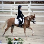 Dressage Bermuda Nov 8 2017 (8)