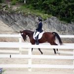 Dressage Bermuda Nov 8 2017 (9)