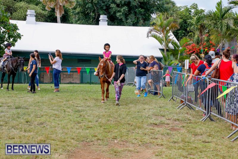 Fall-Festival-Bermuda-November-4-2017_2582