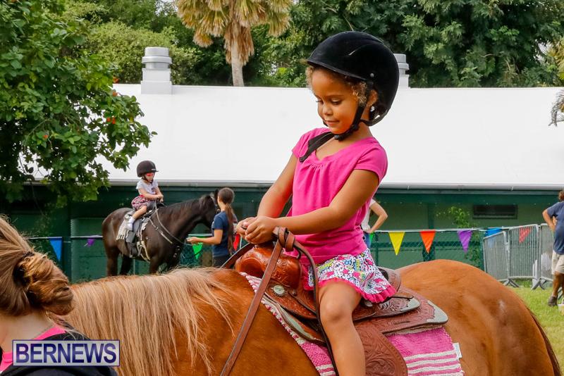 Fall-Festival-Bermuda-November-4-2017_2590
