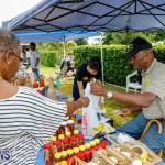Fall Festival Bermuda, November 4 2017_2607