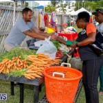 Fall Festival Bermuda, November 4 2017_2641