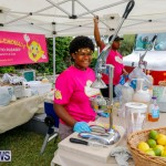 Fall Festival Bermuda, November 4 2017_2752